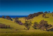Myster-Bay-Hinterland-2016-NSW003-17x25