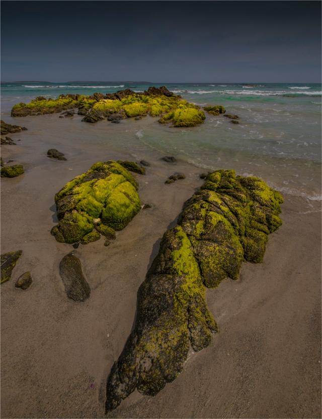 yellow-rcok-king-island-tas-2016-122-20x26