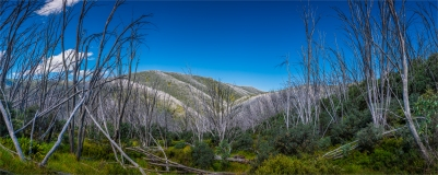 falls-creek-alpinenp-2017-vic-099-18x45