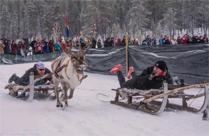 jokkmokk-reindeer-racing-2017-swe404-17x26