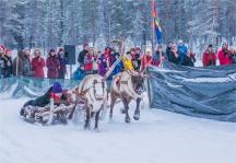 jokkmokk-reindeer-racing-2017-swe483-18x26