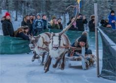 reindeer-racing-jokkmokk-2017-swe026-13x18