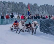 reindeer-racing-jokkmokk-2017-swe044-15x18