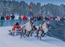 reindeer-racing-jokkmokk-2017-swe045-13x18