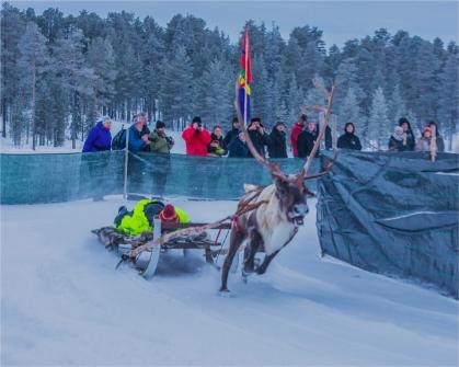 reindeer-racing-jokkmokk-2017-swe054-16x20