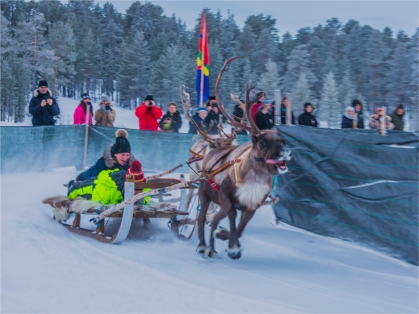 reindeer-racing-jokkmokk-2017-swe075-15x20