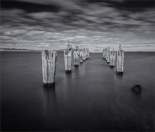 Lillies-Beach-FI-2017-TAS0811M-24x28