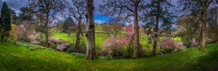Mintern-Gardens-2017-ENG034-18x55