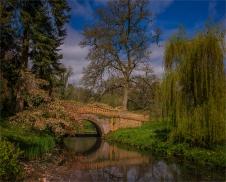 Mintern-Gardens-2017-ENG1016212