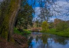 Mintern-Gardens-2017-ENG105-18x26