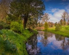 Mintern-Gardens-2017-ENG109969