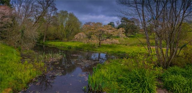 Mintern-Gardens-2017-ENG147-22x45