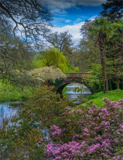Mintern-Gardens-2017-ENG155202