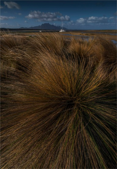 The-Bluff-FI-2017-TAS020-18x26