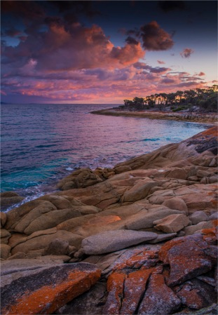 Trousers-Point-FI-2017-TAS150-18x26