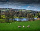 Up-Cerne-2017-ENG0274655