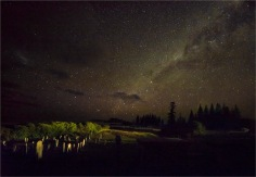 Cemetery-Night-Norfolk-Island-2017-09435