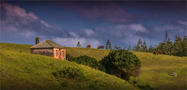 Convict-Hut-2017-Norfolk-Island-105