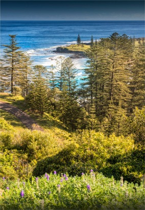 Fletcher-Christian-Drive-2017-Norfolk-Island-006