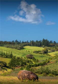 Headland-Reserve-Area-2017-Norfolk-Island-028