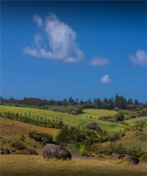Headland-Reserve-Area-2017-Norfolk-Island-031-Pano