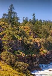Headland-Reserve-Area-2017-Norfolk-Island-046-Pano