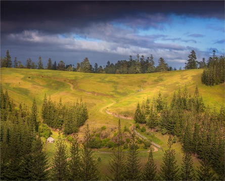 Middlegate-Road-2017-Norfolk-Island-3043
