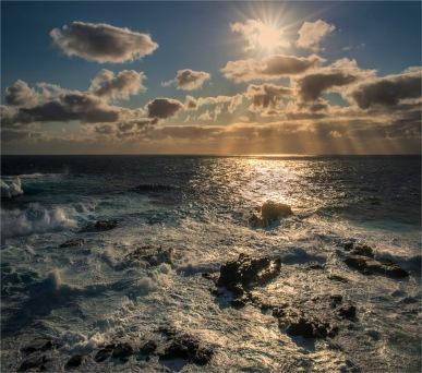 Rocky-Reserve-Coastline-Reserve-2017-Norfolk-Island-083