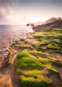 Slaughter-Bay-Low-Tide-2017-Norfolk-Island-452