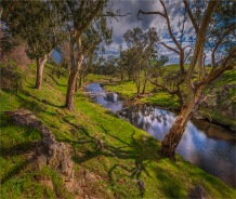 Torrens-River-Valley-2017-SA-05027 copy