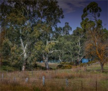 Torrens-River-Valley-2017-SA-07335 copy
