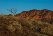 Wilpena-South-2017-SA-103 copy
