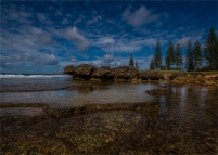 Cemetery-Bay-Low-Tide-05092018-NI-010