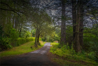 Red-Road-Views-17092018-NI-008