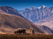 Jharkot-2018-NEPAL-0120