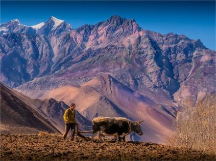 Jharkot-2018-NEPAL-0128