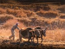 Jharkot-2018-NEPAL-0150