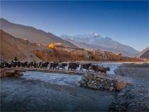 Kagbeni-Dawn-2018-NEPAL-0402