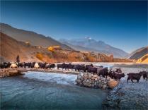 Kagbeni-Dawn-2018-NEPAL-0415