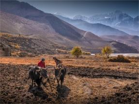Kagbeni-Mustang-NOV-2018-NEPAL-0075