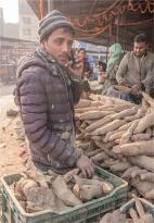 Kathmandu-Kalimati-Market-18112018-NEPAL-0156