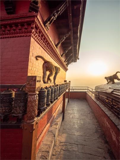 Kathmandu-Swayambunath-17112018-NEPAL-0109