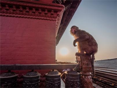 Kathmandu-Swayambunath-17112018-NEPAL-0117