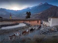 Marpha-Mustang-NOV-2018-NEPAL-0328