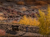 Tiri-Upper-Mustang-2018-NEPAL-0026