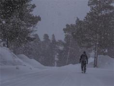 Ian-Stora-Sjofalletts-NP-06032019-Snowfall-SWE801