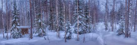 Lassbyn-Winter-09032019-SWE0203-Panorama