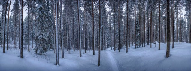 Lassbyn-Winter-09032019-SWE386-Panorama
