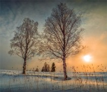 Ranea-Winter-11032019-SWE009