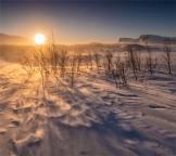 Stora-Sjofalletts-NP-Sun-05032019-SWE629